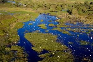 Aurukun Wetlands Aerial A4